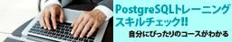 PostgreSQL トレーニングスキルチェック
